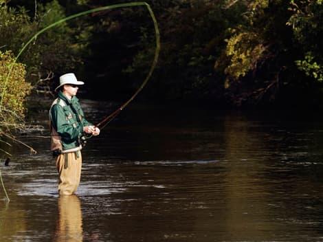 fly fishing -attraction near highlands motor inn - oberon - nsw